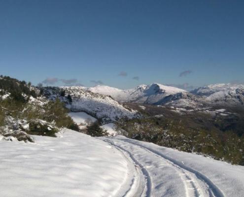 En invierno puedes disfrutar de rutas con esquis o raquetas